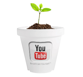 paid-youtube-video-seeding